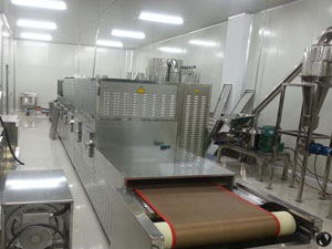 Microwave Date Drying Sterilization Machine
